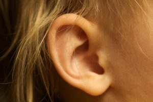 picture of ear